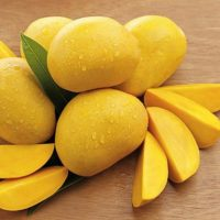 number11-mango